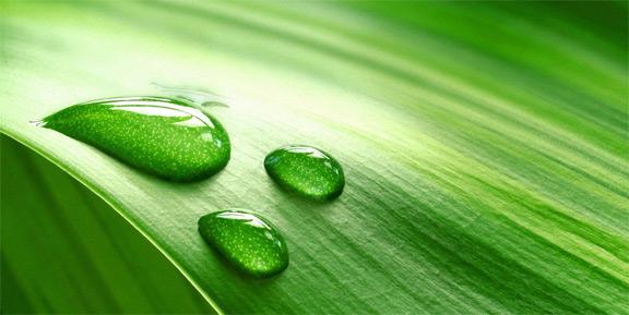 Úprava povrchové vody na pitnou